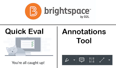 New Tools in D2L: Quick Eval and Annotations